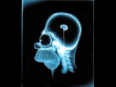 wallpapers: Funny Brain Wllpapers