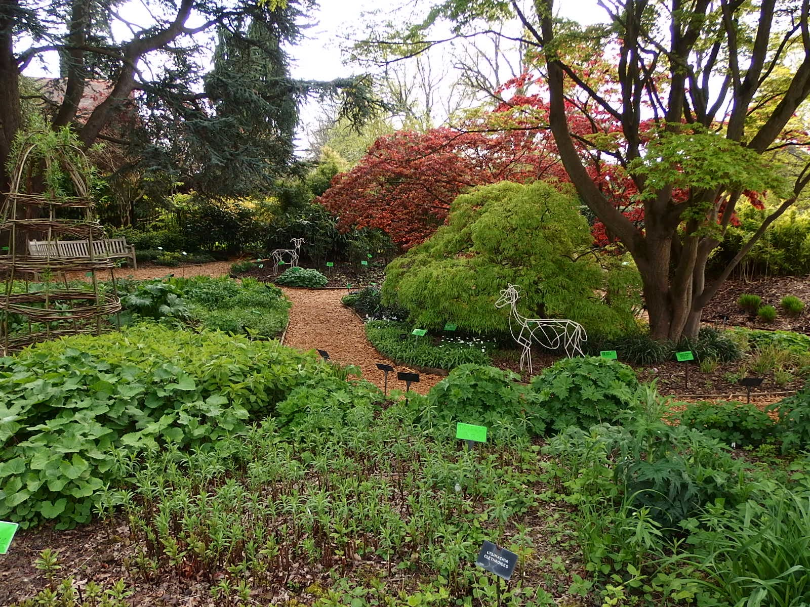 Garden Visit University Of Bristol Botanic Garden