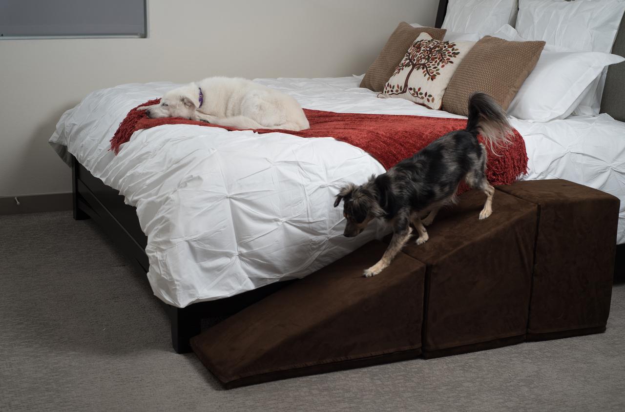 Pet Ramps For Beds. Folding Aluminum Dog Ramps. . . Dog ...
