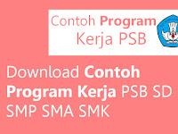 Download Contoh Program Kerja PSB SD SMP SMA SMK