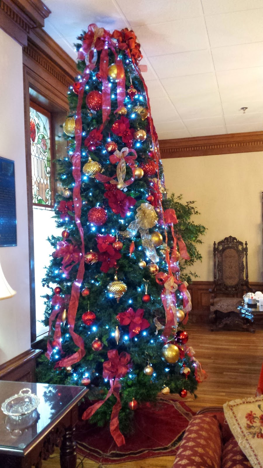 Newman Christmas Trees.Carson Newman Women Of Vision News It S Beginning To Look A