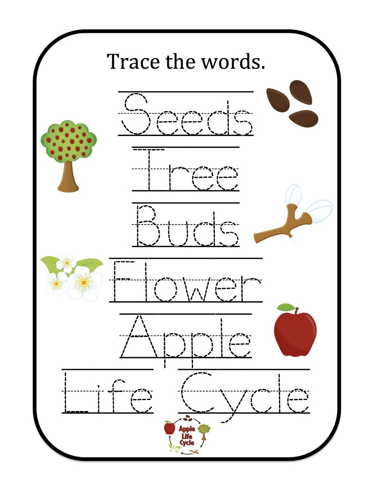Apple Trace The Words 1 236 1 600 Pixels