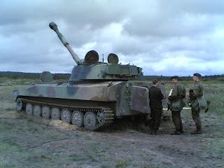 Артилерія Польщі: сучасний стан - 2С1 Гвоздика