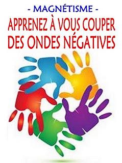 Apprenez à Vous Couper Des Ondes Négatives de Alexis Delune PDF