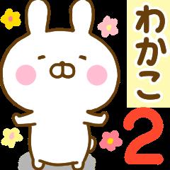 Rabbit Usahina wakako 2