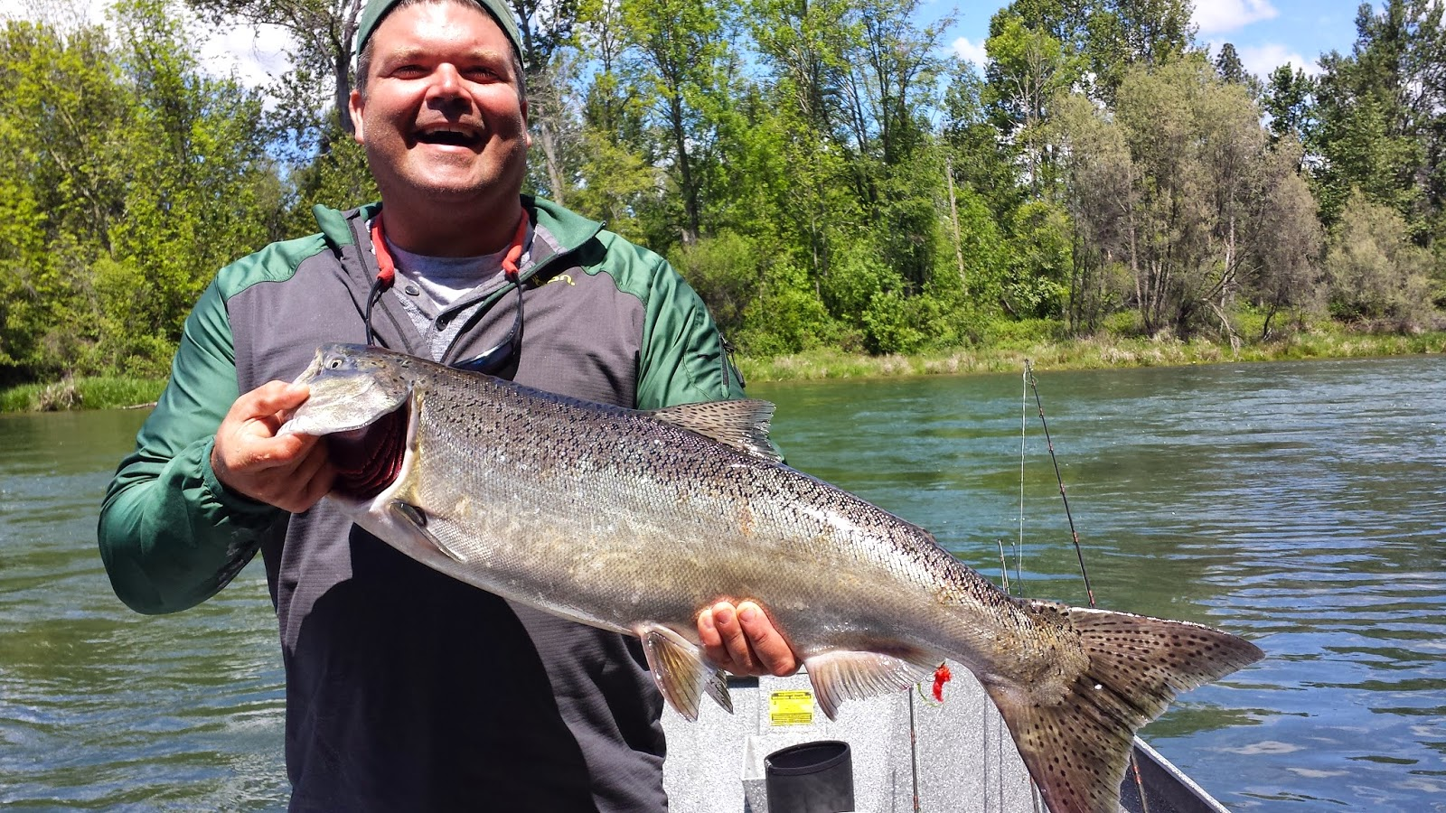 Guided Fishing on the Rogue and Umpqua Rivers' for Salmon