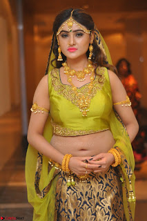 Sony Charishta in Green Choli Ghagra Transparent Chunni Ethnic Wear March 2017 060.JPG