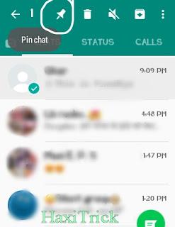 pin-chat-on-whatsapp
