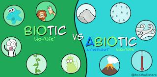 Contoh Lingkungan Biotik dan Abiotik Saling Ketergantungan dan Pengertiannya