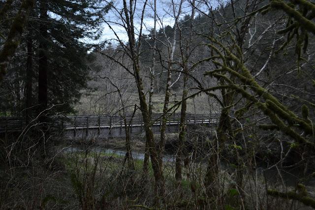 bridge crossing the wide creek by the meadow