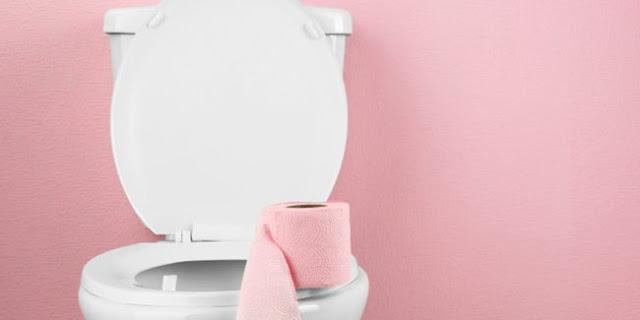 Cara Mengatasi Toilet Yang Tersumbat