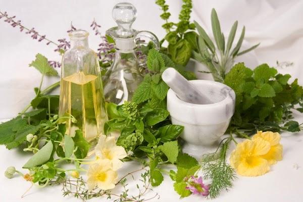 Tanaman Herbal Ini Dapat Mengobati Penyakit Jantung Koroner
