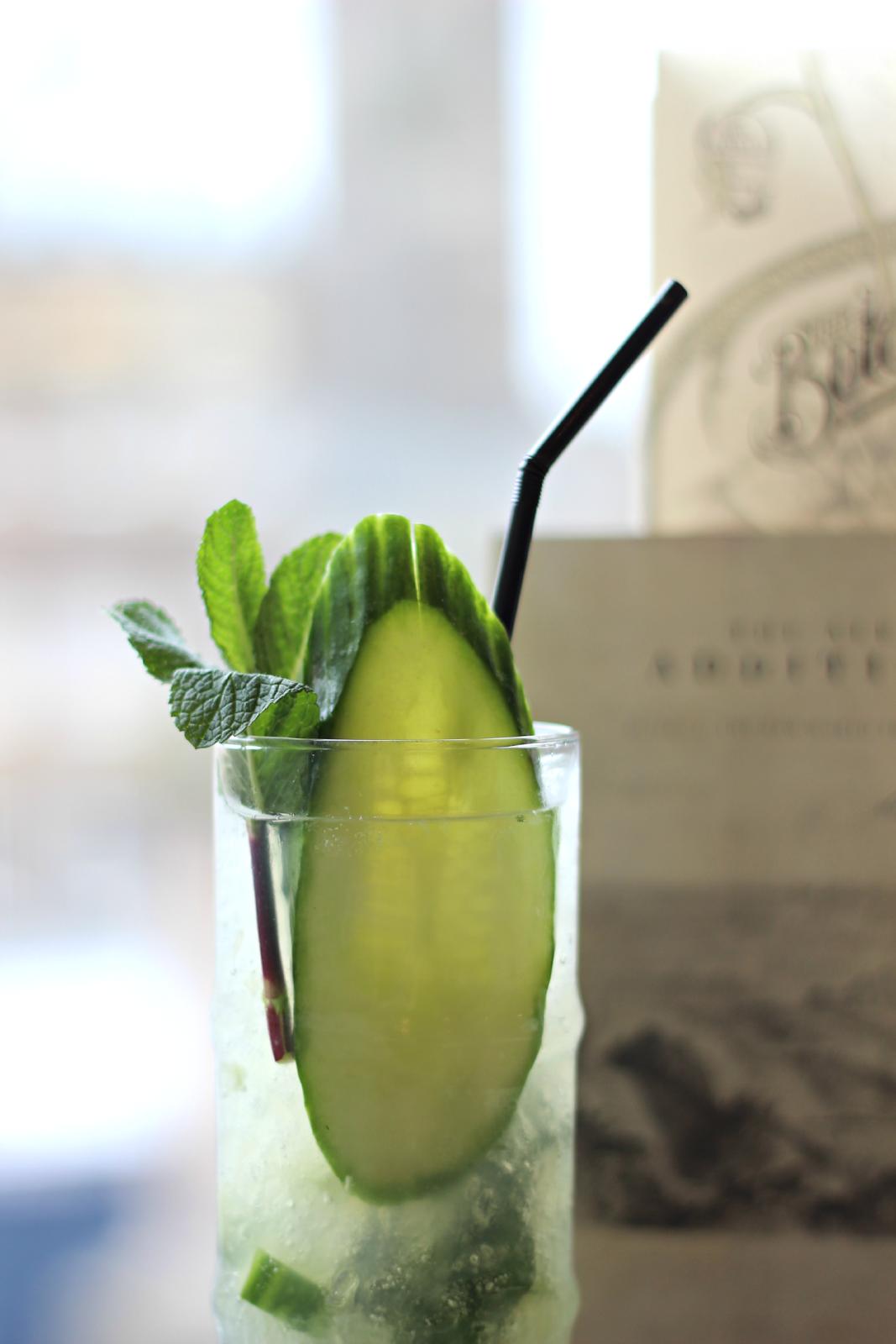 botanist gin and tonic garnish