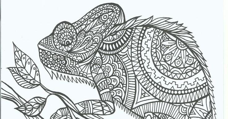 Coloring Page World Chameleon Portrait