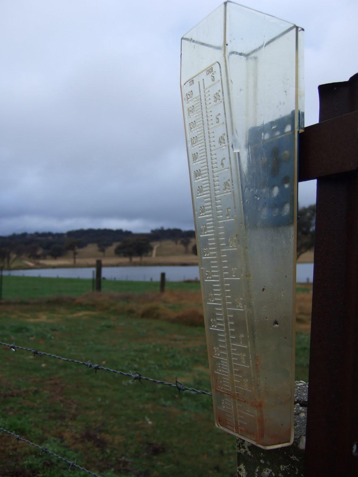 K T S Farm Life Pitter Patter Rain Drops