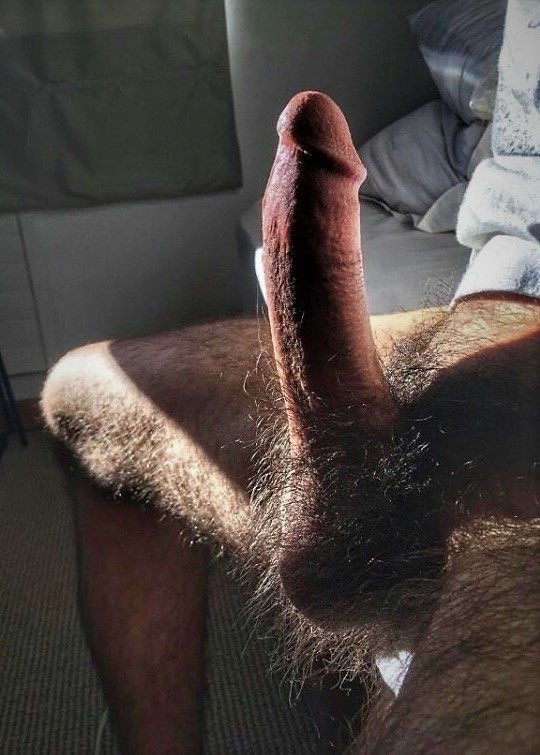 Amateur My Hairy Cock Close Ups