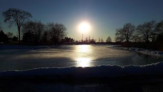 lac du Parc Jarry, arbres, coucher de soleil