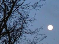 Lirik Lagu Padang Bulan Dan Artinya [Sholawat Habib Syech]