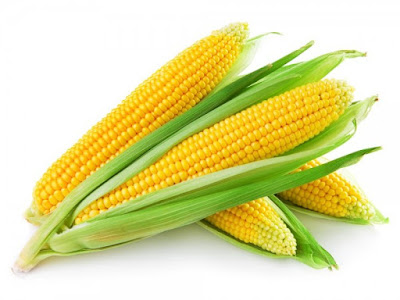 India approves import of 5 lakh tonnes corn