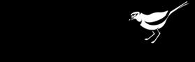 Cockoo sandbox logo