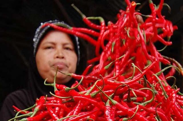 Dahsyat, Harga Cabe di Pasar Peunayong Melambung