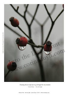 photo of raindrops under rosebuds, page from Into the Light by Corina Duyn