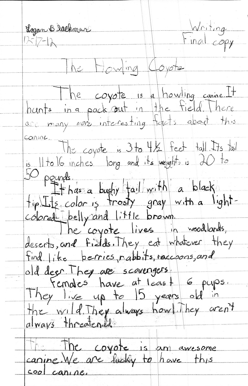 essay about adoption adoption essay sample
