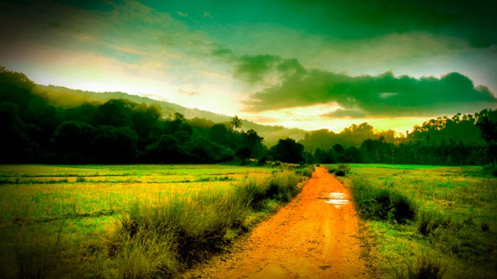 Landcape of Coorg, Sunset,