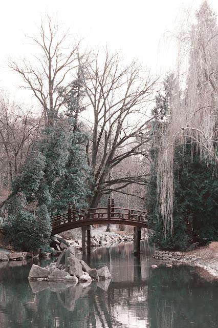 japoński ogród wrocław