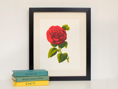 Camellia Flower A4 Screen Print Botanical Drawing Style Limited Edition