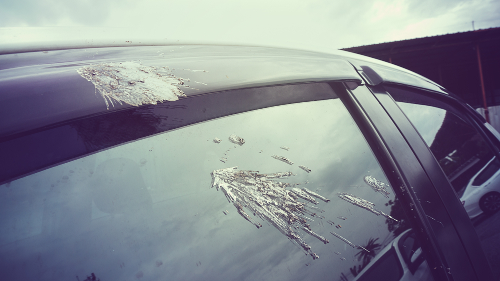 7 Ways to Keep Your Vehicle Looking as Good as New