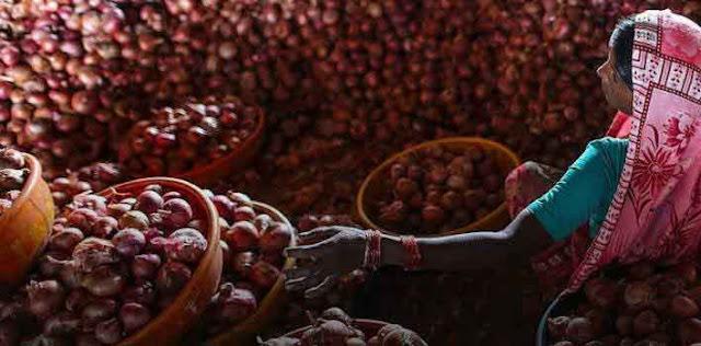 प्याज किसानों को 150 करोड़ की राहत - महाराष्ट्र सरकार