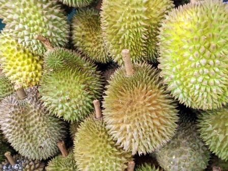 Kandungan Buah Durian Untuk Kolesterol Dan Ibu Hamil