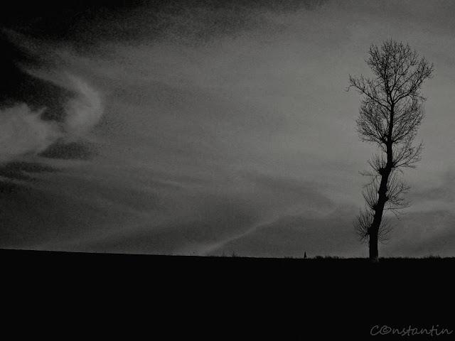 Răsărit (varianta alb/negru) - momentul zilei nu este foarte bine definit