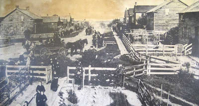 Black and white photo of horses on a dirt street, front yards with wooden fences and vegetable gardens, clapboard houses