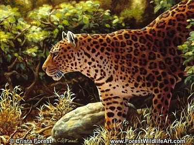 Forest Wildlife Art Leopard Coloring Page For Kids