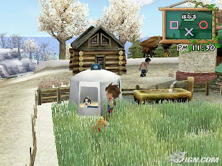 Harvest Moon: A Wonderful Life Special Edition (PS2) 2004