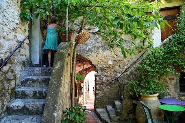 집들사이의 포도나무