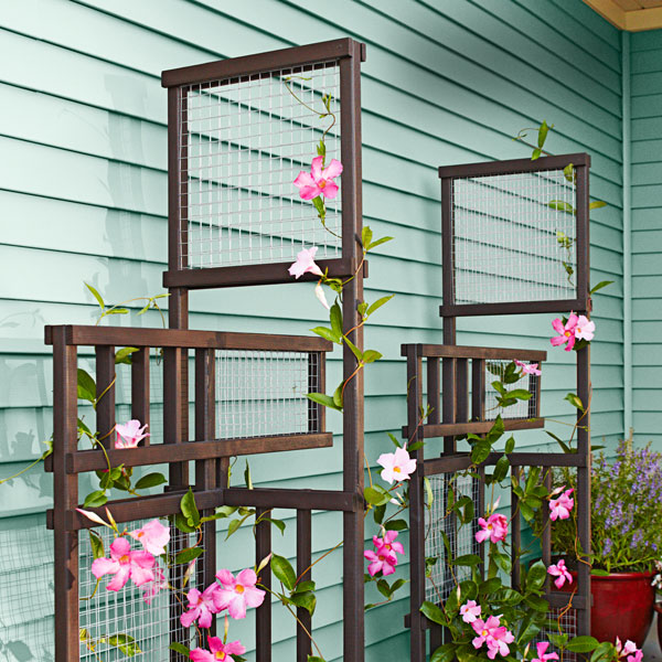 Do It Yourself Ideas And Projects 17 Exceptional Diy Trellis