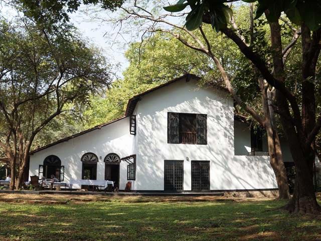 Fastudio la casa immersa nella natura nel centro di for La migliore casa progetta lo stile indiano