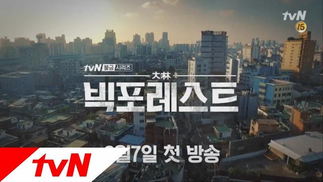 tvN推出週五金曜劇《Big Forest》 觀眾天天都有tvN戲劇可以收看了!