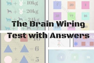 The Brain Wiring Test for Kids, Teens and Adults with Answers