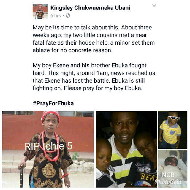 house maid sets her employers two sons on fire.