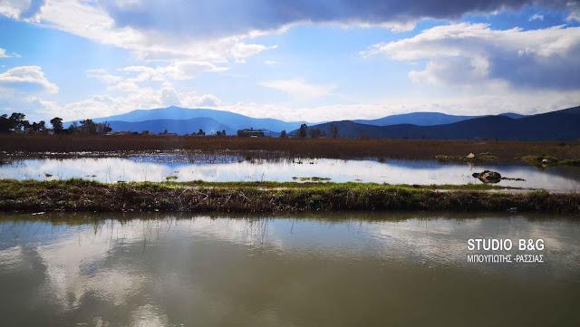 Παραμένουν τα λιμνάζοντα νερά στο Τημένιο (βίντεο)