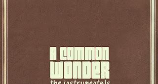 A Common Wonder Instrumentals von Amerigo Gazaway | Album Stream fürs Wochenende