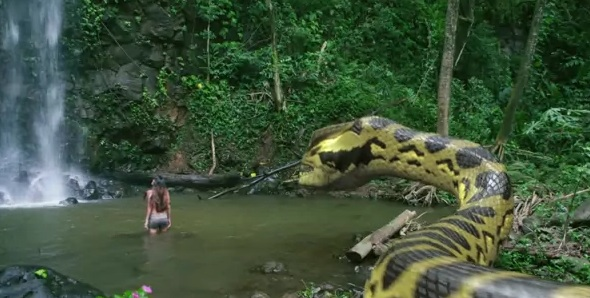Brazil gay porn movies i found the guys 2