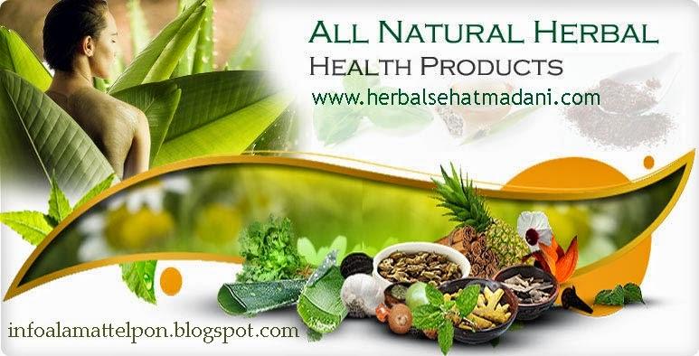 kini telah kaya di minati untuk penyembuhan selain obat kimia sebab semakin berkembang Daftar Alamat Toko Herbal Yogyakarta