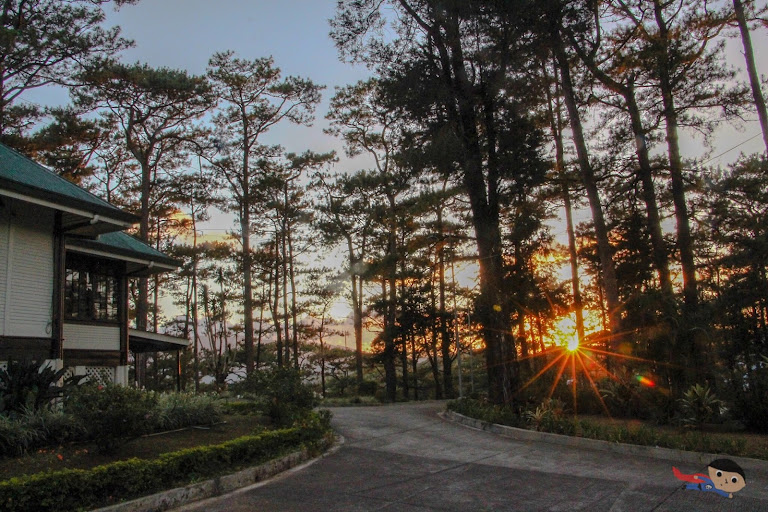 Sunset in Baguio nature photography
