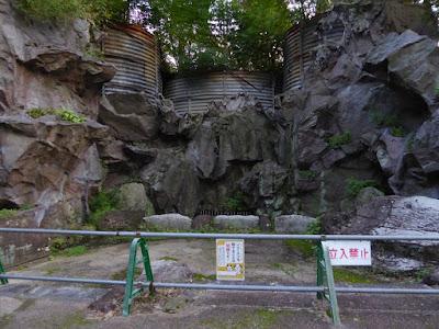 花博記念公園鶴見緑地 花の谷