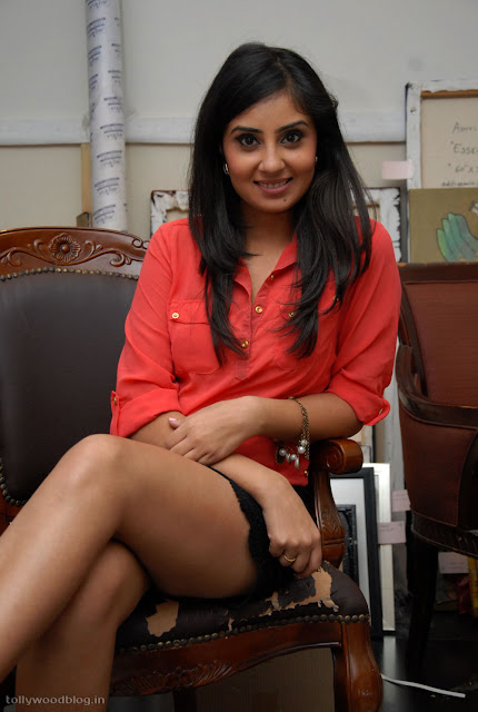 Bhanu Sri Mehra hot tiny shorts photoshoot